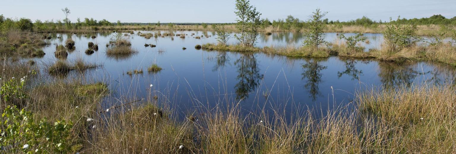 沛县千岛湿地景区