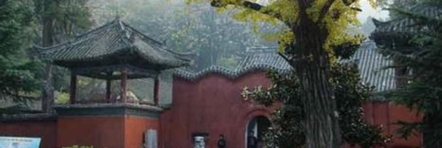芒市菩提寺