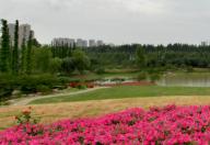 秀丽东方景区