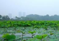 玄武湖公园