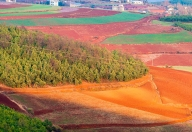 东川红土地景区