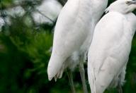 滁州皇甫山国家森林公园